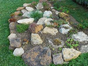 le jardin d39alecs ma petite rocaille With modeles de rocailles jardin 5 plante de rocaille liste ooreka