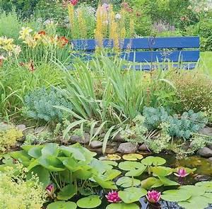 Plantes Vivaces Autour D Un Bassin : les plantes de berge la croix ~ Melissatoandfro.com Idées de Décoration