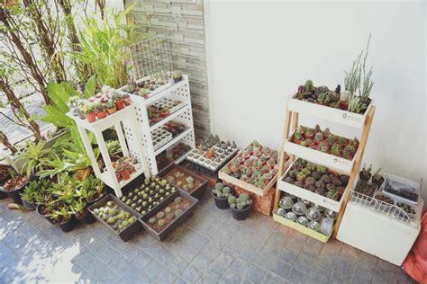 มาจัดสวนหลังบ้านด้วย