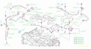 Subaru Forester Vapor Canister Purge Solenoid  Valve Duty
