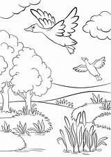 Coloring Forest Lake Ducks Grassland Duck Grass Animals Trees Fly Under Printable Sheet Animal sketch template