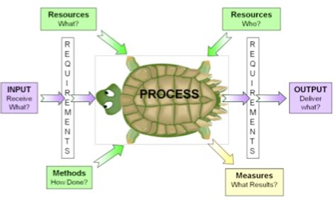 turtle diagram template the power of using turtle diagrams blackmores