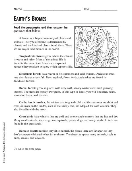 tundra biome worksheet answers science tundra best free