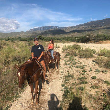 tucson horseback riding tripadvisor go