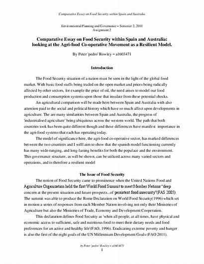 Security Essay Comparative Academia