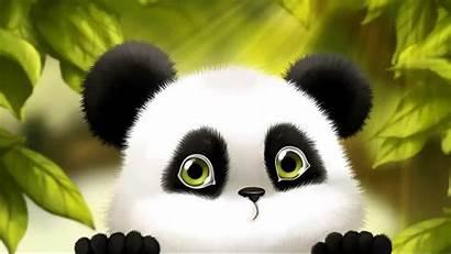 Panda Cartoon Wallpapers Wallpaperplay