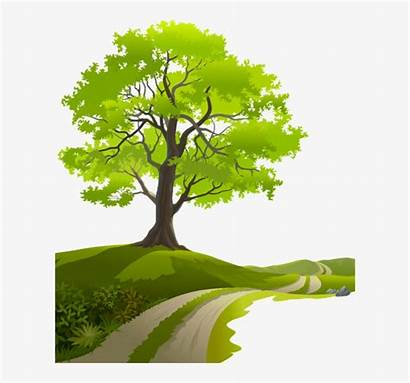 Nature Clipart Vector Tree Spring Borders Clip