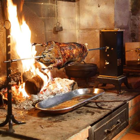 cuisiner un canard gras l 39 oie rôtie à la broche par b tenailleau et j c algans