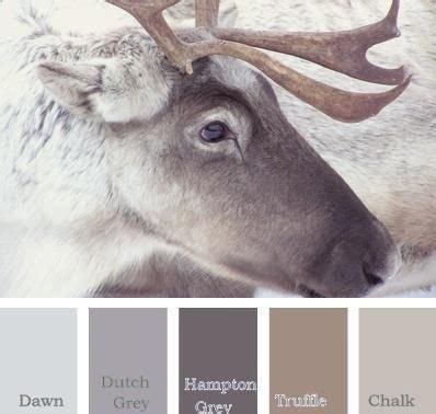 beautiful paint palettes inspired  winter color