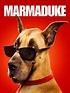 Marmaduke (2010) - Tom Dey | Synopsis, Characteristics ...