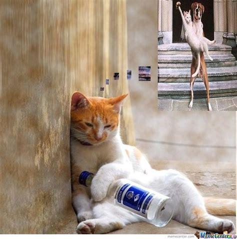 Sad Cat Meme - sad cat memes image memes at relatably com