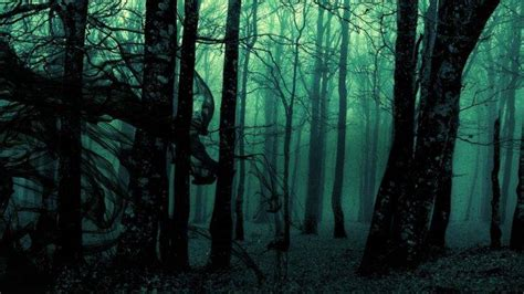 If you have your own one, just create an account on the website and upload a picture. forest, Green, Trees, Dark Wallpapers HD / Desktop and Mobile Backgrounds
