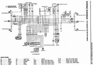 Suzuki Lt 250 Atv Wiring Diagram  U2022 Wiring Diagram For Free
