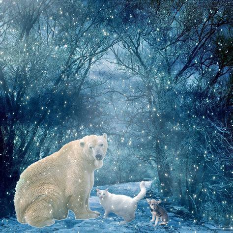 animals  snowy winter scene  animals