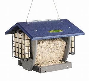 Duncraft com: Cardinal Hopper & Suet Bird Feeder