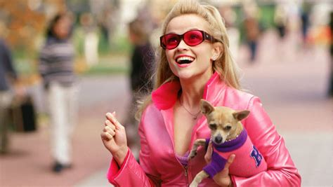 Legally Blonde Meme - review legally blonde the viewer s commentary