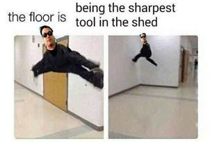 Sharpest Tool In The Shed Meme by Being The Sharpest Tool In The Shed The Floor Is