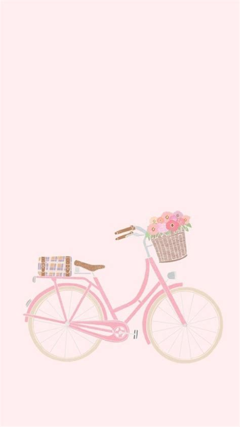 pink bicycle background zz zwyanezade em  planos