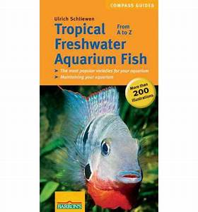 freshwater aquarium fish a to z - Tropical Freshwater ...