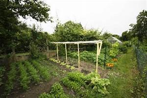 Abri A Tomate : mon abri tomate page 2 semences ~ Premium-room.com Idées de Décoration