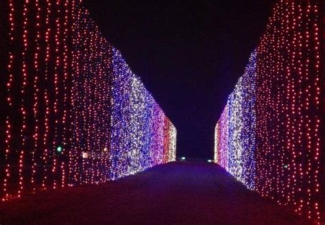 illuminate light show illuminate light show santa wtvr