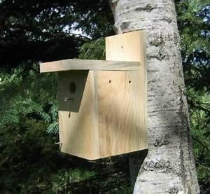 simple birdhouse plans pdf woodideas