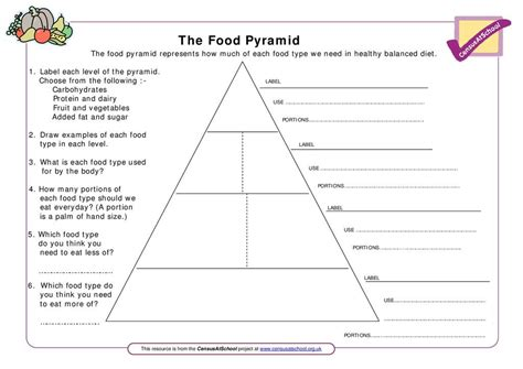 food pyramid suitable  home teaching stem