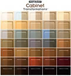 Cabinet Colors Home Depot by Transforming Your Kitchen Cabinets And More Makely
