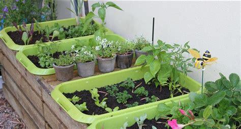 home vegetable garden in pots www pixshark images
