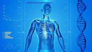 Douleur Milieu Dos Cancer : mal de dos et cancer que faut il savoir ~ Medecine-chirurgie-esthetiques.com Avis de Voitures