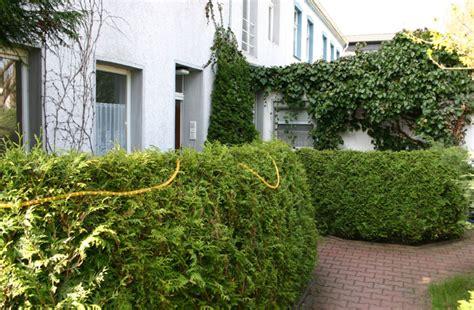 Appartementgarten In Berlin, Spandau