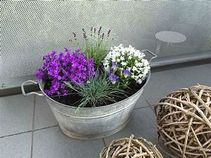 Blumenkästen Bepflanzen Ideen : sommer bepflanzung balkon bepflanzung blumen f r garten ~ A.2002-acura-tl-radio.info Haus und Dekorationen