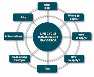 The Life Cycle Management Navigator  Cd Edition