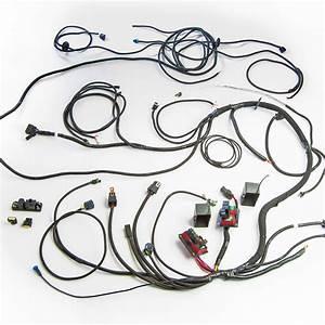 Tk30019  U2013 Chassis Wiring Harness  U2013 Copo Parts Direct