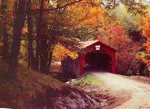 hd, wallpaper, , covered, bridge, , vermont, , stream, , seasons