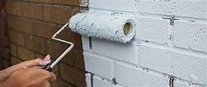 Peindre Des Briques De Cheminée : peindre des briques comment peindre ~ Farleysfitness.com Idées de Décoration