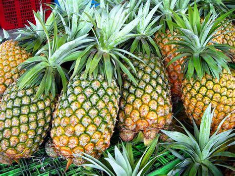 top   popular fruits   philippines  beautiful