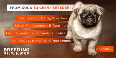 dog breeding start run grow kennel