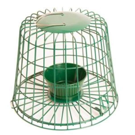 starling proof bird feeders caged bird feeders