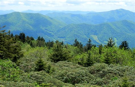 Roan Mountain Tennessee