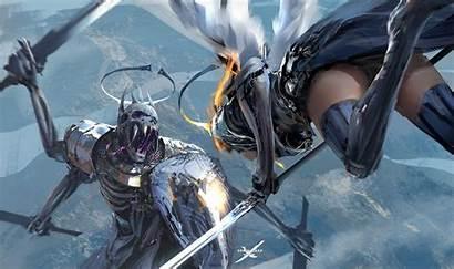 Knight Shield Armor Sword Wings Wallpapers