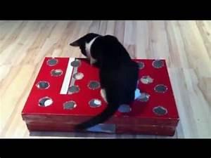 Katzenspielzeug Selber Machen Karton : fummelbrett katz und maus selber bauen cat activity fun board youtube ~ Frokenaadalensverden.com Haus und Dekorationen