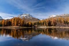 Swiss Alps Landscape Stock Photo Image Summer Peak