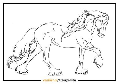 Kleurplaat Paard Tinker by Friese Paarden Kleurplaat Zoeken Kleurplaat T