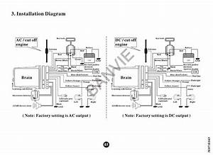Spy 5000m Wiring Diagram For Alarm