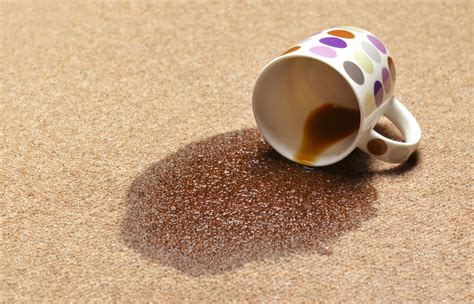 how to get coffee stains out of carpet carpet coffee stain removal meze blog