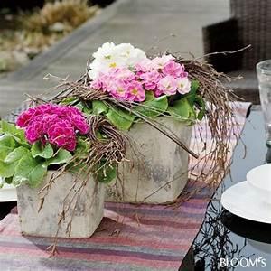 mit primeln kubel bepflanzen gefass duo mit birkenzweige With französischer balkon mit große windlichter für den garten