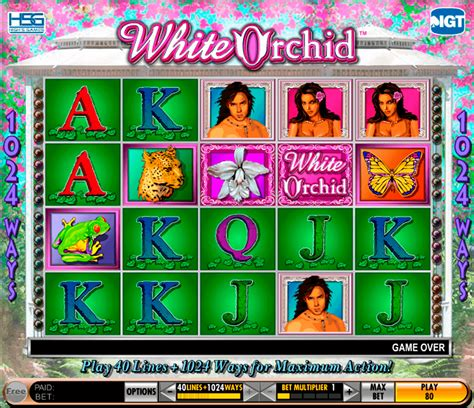 Play White Orchid FREE Slot - IGT Casino Slots Online