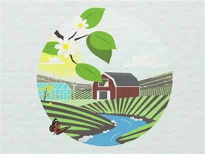 Seasons Four Joakim Dribbble Loop Farm Larger