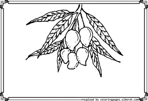 mango coloring page getcoloringpagescom